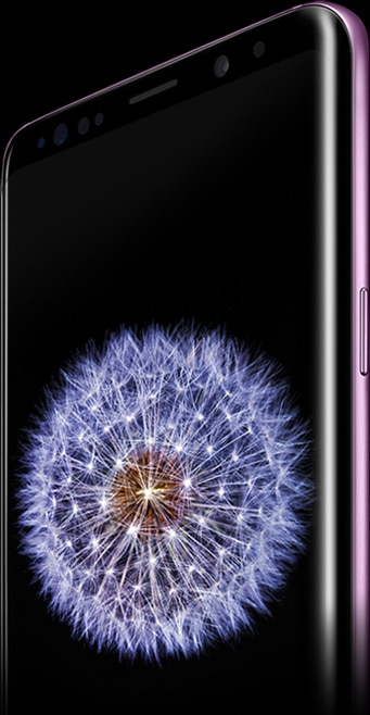 Galaxy S9+ standing at an angle with dandelion image on-screen and dandelion seeds floating in air to the right of the phone