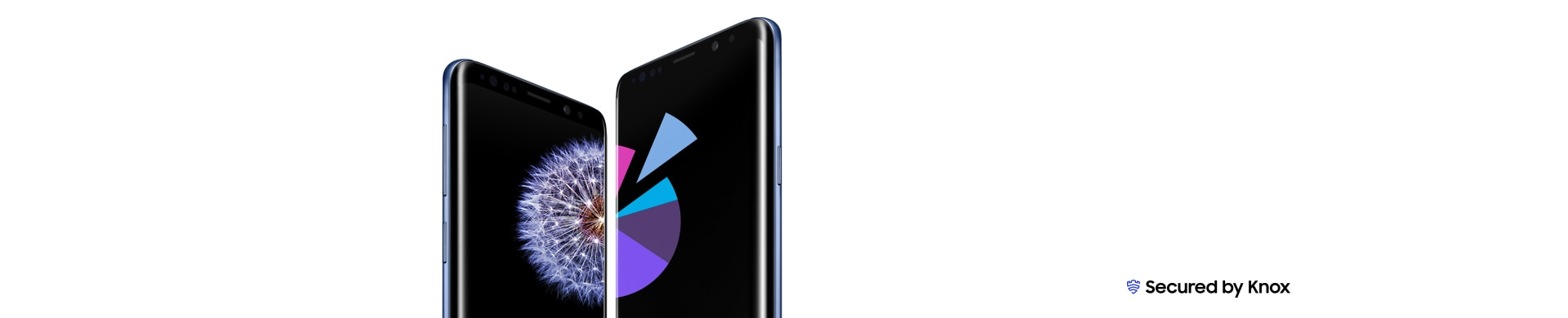 Galaxy S9 and S9+ standing, angled towards each other. Galaxy S9 has the dandelion wallpaper on-screen while Galaxy S9+ displays a pie chart